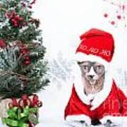 Xmas Holidays Greeting Card 108 Poster