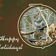Happy Holidays Greeting Card - Gray Squirrel Poster