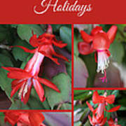 Happy Holidays Natural Christmas Card Or Canvas Poster