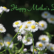 Happy Mother's Day 03 Poster