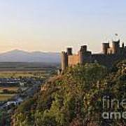 Harlech Castle Wales Poster