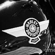 Harley Davidson Aviation Themed Star Logo On Fat Boy Bike In Orlando Florida Usa Poster