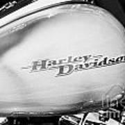 Harley Davidson Logo On Street Glide Bike Orlando Florida Usa Poster