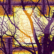Harmonious Colors - Violet Yellow Orange Poster