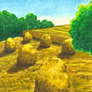 Harvest Gold Poster