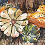 Harvest Gourds Poster