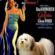 Havanese Art - Gilda Movie Poster Poster