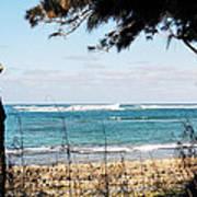 Hawaiian Beach Poster