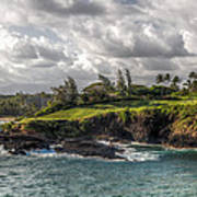 Hawaiian Shores Poster