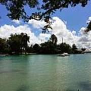 Hawaiian Landscape 2 Poster