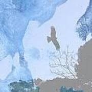 Hawk In Flight 1 Poster