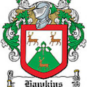 Hawkins Coat Of Arms Wexford Poster
