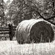 Hay Bale In A Farm Field Poster