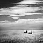 Hay Bales Black And White Poster
