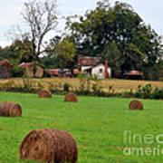 Hay From North Carolina Poster