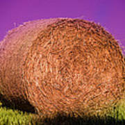 Hay Roll Poster