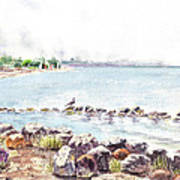 Hazy Morning At Crab Cove In Alameda California Poster