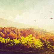 Hazy Morning In Trossachs National Park. Scotland Poster by Jenny Rainbow