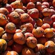 Heap Of Pumpkins Poster