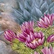 Hedgehog In Bloom Poster