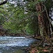 Hemlock Creek Edge Poster