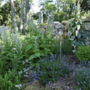 Herb Garden Poster