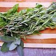 Herbs On Cutting Board Poster