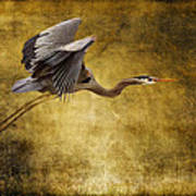 Heron Texturized Poster
