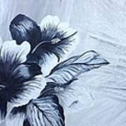 Hibiscus  Black And White Poster