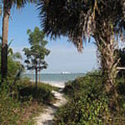 Hidden Path To The Beach Poster