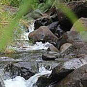 Hidden River Poster