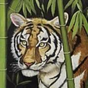 Hiding In The Bamboo Poster by Wanda Dansereau