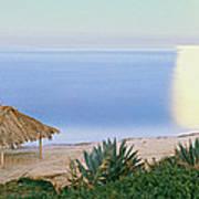 High Angle View Of Windansea Beach, La Poster