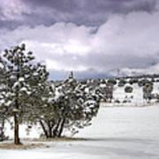 High Desert Snow Poster