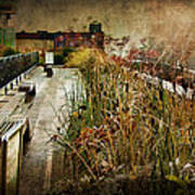 High Line Park In The Rain New York Poster