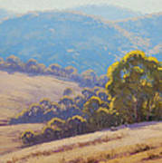 Highland Grazing Lithgow Poster