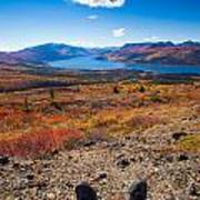 Hiker In Fall-colored Tundra Poster