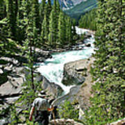 Hiking In Mistaya Canyon Along Icefield Parkway In Alberta Poster