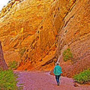 Hiking On Capitol Gorge Pioneer Trail In Capitol Reef National Park-utah Poster