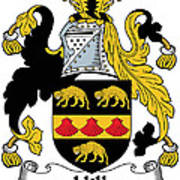 Hill Coat Of Arms II Irish Poster