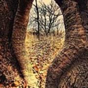 Hobbitt Vip Entrance Poster