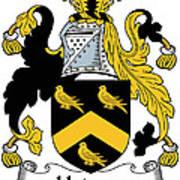 Hodson Coat Of Arms Irish Poster