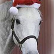 holiday horse Friendly Poster