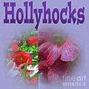 Hollyhocks Poster