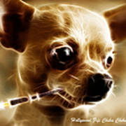 Hollywood Fifi Chika Chihuahua - Electric Art - With Text Poster