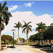 Hollywood Florida Poster