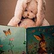 Home For A Bunny 1 Poster