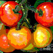 Homegrown Tomatoes Poster by Annette Allman