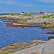Homes Across Peggy's Cove-ns Poster