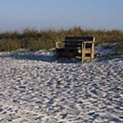 Honeymoon Island Beach Poster